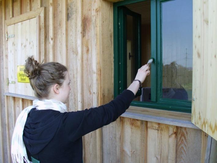 2010: Anstrich der Fenster.